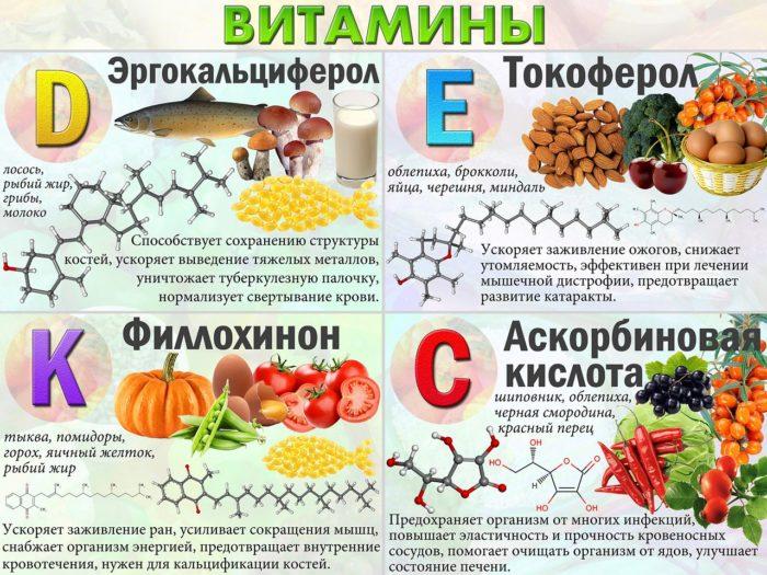 Продукты насыщены витаминами